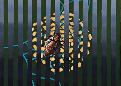 """Bug,  אקריליק על קנווס, 100x100 ס""""מ , 1998."""